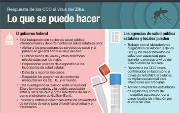 Vista en miniatura de la infografía Respuesta de los CDC al zika, qué se puede hacer