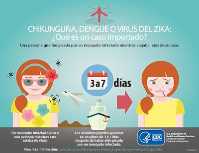 Chikunguña, dengue o zika: ¿Qué es un caso importado? Una persona que fue picada por un mosquito infectado mientras estaba lejos de su hogar. 3-7 días