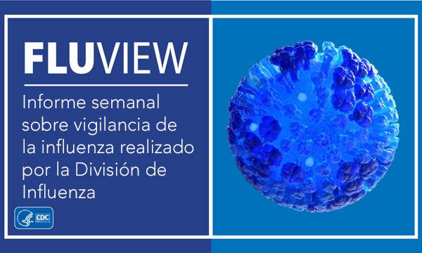 Banner del informe semanal de FluView
